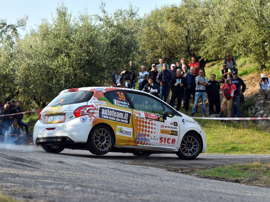 Stefano Strabello, Davide Bianchi (Peugeot 208 R2 #36, Destra4)