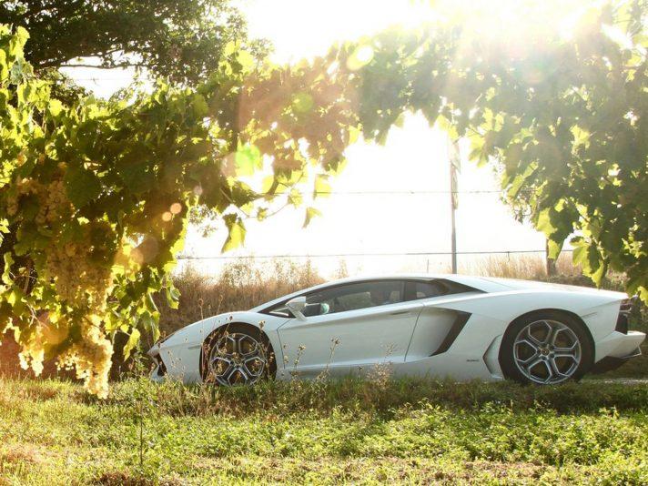 Lamborghini Aventador profilo