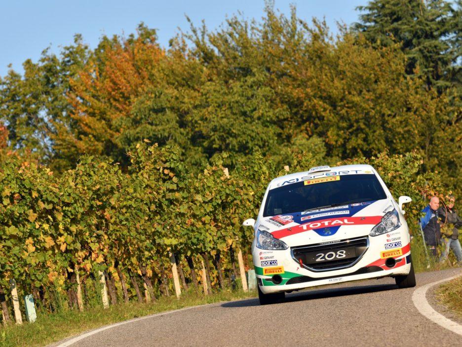 Damiano De Tommaso, Michele Ferrara (Peugeot 208 R2 #30, FPF)